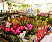 As Flores Para Cada Estação do Ano (12)