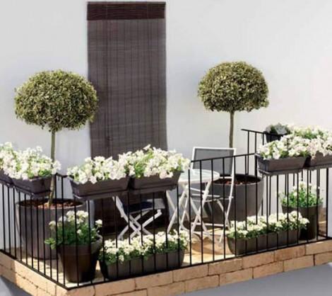 Plantas para sacada de apartamento flores cultura mix for Apartment patio decorating ideas photos
